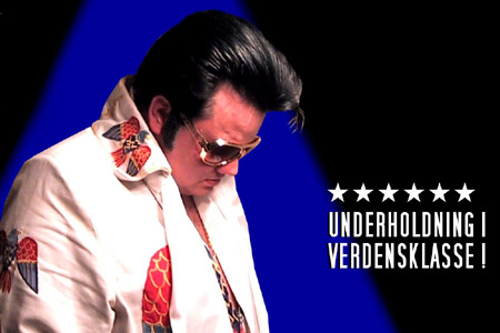 Elvis in concert - Mike Andersen